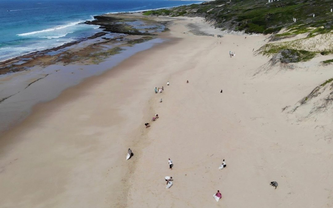 Week 4 – Surfing, Take Action and new shapers